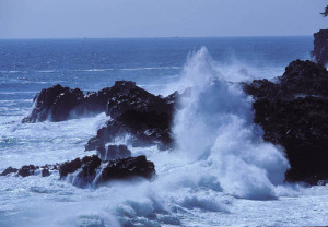 Typhoonwaveizu2